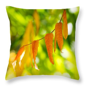 Throw Pillow featuring the photograph Turning Autumn by Aaron Aldrich