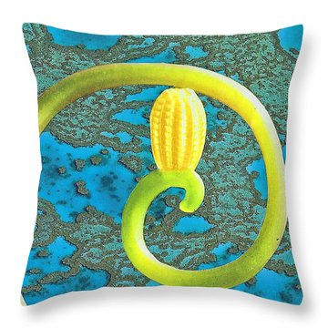 Turning In On Oneself Throw Pillow