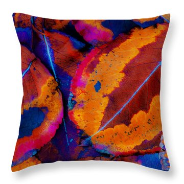 Turning Leaves 5 Throw Pillow by Stephen Anderson
