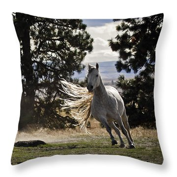 Turning On A Dime Throw Pillow by Wes and Dotty Weber