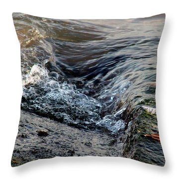 Turnstone By The Water Throw Pillow