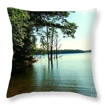 Throw Pillow featuring the photograph Turquoise Lake by Becky Lupe
