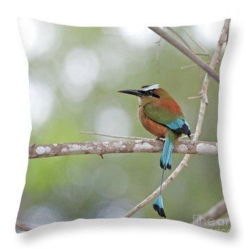 Turquoise Pendant.. Throw Pillow