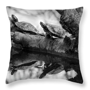 Turtle Bffs Bw By Denise Dube Throw Pillow