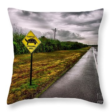 Turtle Crossing Area Throw Pillow by Mark Miller