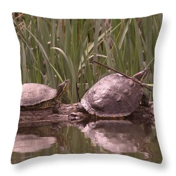 Turtle Struggling To Rest On A Log With Its Buddy Throw Pillow by Jeff Swan