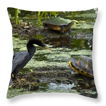 Turtles And Anhinga Throw Pillow