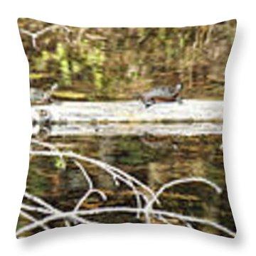 Turtles On A Log Throw Pillow