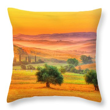 Tuscan Dream Throw Pillow