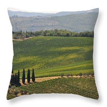 Tuscan Hillside Throw Pillow