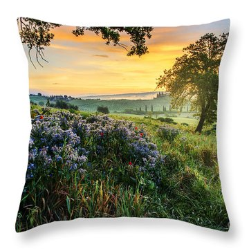 Tuscan Landscape Throw Pillow by Yuri Santin
