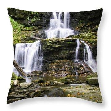 Tuscarora Falls Throw Pillow