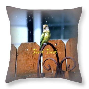 Tweet Tweet Throw Pillow by Kay Novy