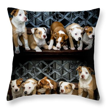 Twice The Love Throw Pillow