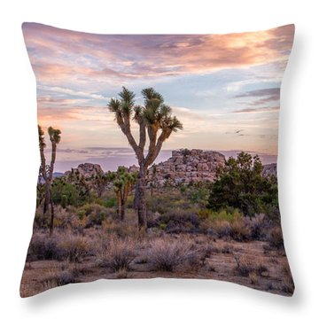 Twilight Comes To Joshua Tree Throw Pillow