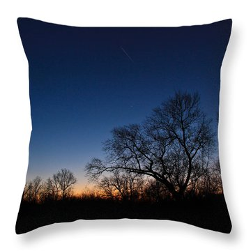 Twilight Dream Throw Pillow by Julie Andel
