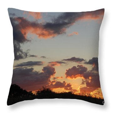 Twilight Glow Throw Pillow