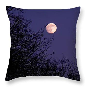 Twilight Moon Throw Pillow by Rona Black