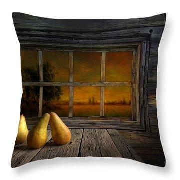 Twilight Of The Evening Throw Pillow by Veikko Suikkanen