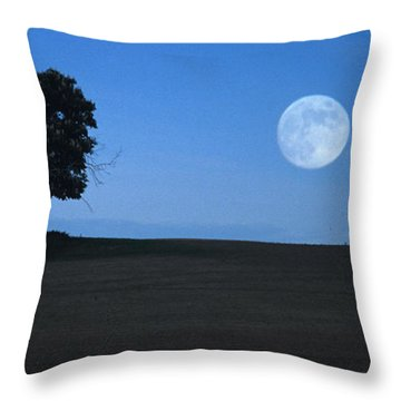 Throw Pillow featuring the photograph Twilight Solitude by Sharon Elliott