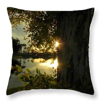 Throw Pillow featuring the photograph Twilight Splendor by Deb Halloran