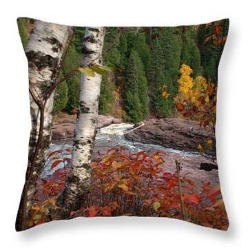 Twin Aspens Throw Pillow by James Peterson
