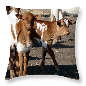 Throw Pillow featuring the photograph Twin Bad Boys by Linda Cox