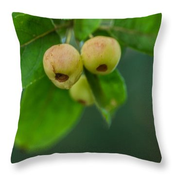 Throw Pillow featuring the photograph Twin Berries by Jacqui Boonstra
