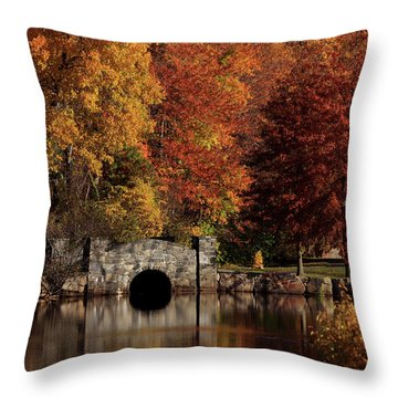 Twin Brooks Throw Pillow by Karol Livote
