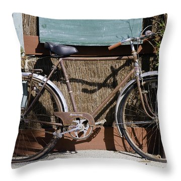Twin Flats Throw Pillow by Bob Phillips