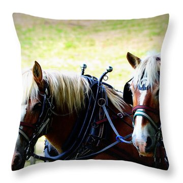 Throw Pillow featuring the photograph Twin Horses by Cathy Shiflett
