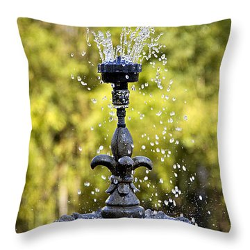 Twin Oaks Garden Fountain Throw Pillow