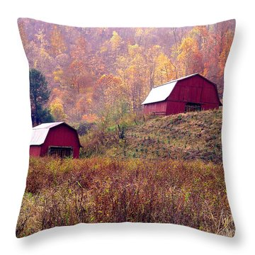 Twin Tobacco Barns Throw Pillow