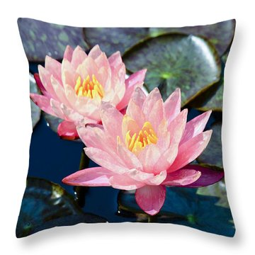 Two Pink Waterlilies Throw Pillow