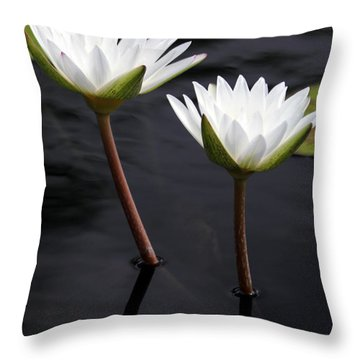 Twin White Water Lilies Throw Pillow by Sabrina L Ryan