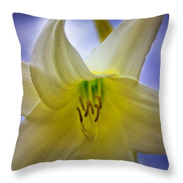 Twinkle Twinkle Little Star Throw Pillow by Al Bourassa