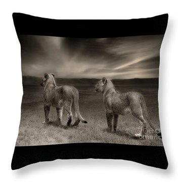 Throw Pillow featuring the photograph Twins 2 by Christine Sponchia