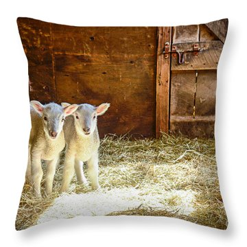 Twins Throw Pillow by Alana Ranney