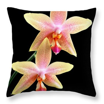 Twins Throw Pillow by Bill Morgenstern