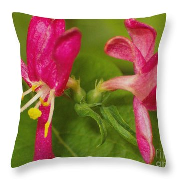 Throw Pillow featuring the photograph Twins by Sara  Raber