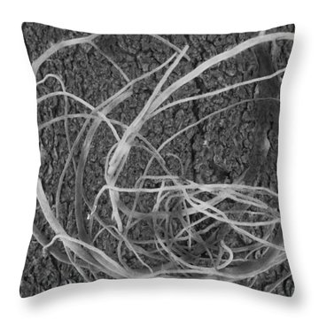 Throw Pillow featuring the photograph Twirl by Tarey Potter