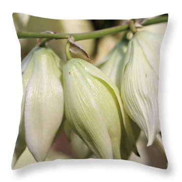 Twist-leaf Yucca Throw Pillow