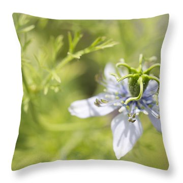 Throw Pillow featuring the photograph Twist by Priya Ghose