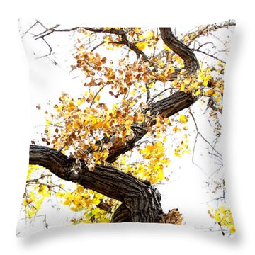 Throw Pillow featuring the photograph Twisted Branches by Ruth Jolly