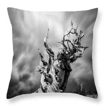 Twisted In Time Throw Pillow by Tassanee Angiolillo