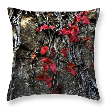 Twisted Red Throw Pillow