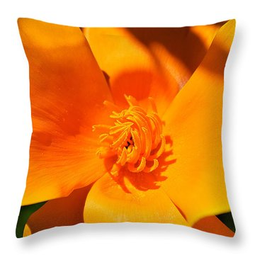 Twisted And Shadows Throw Pillow by Felicia Tica