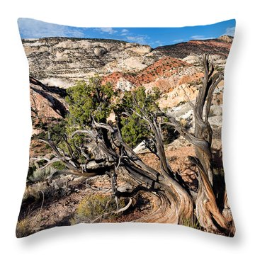 Twisted Snag Throw Pillow
