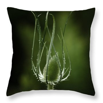 Twisting Beauty Throw Pillow