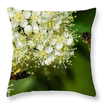 Two Bees On A Rowan Truss - Featured 3 Throw Pillow by Alexander Senin